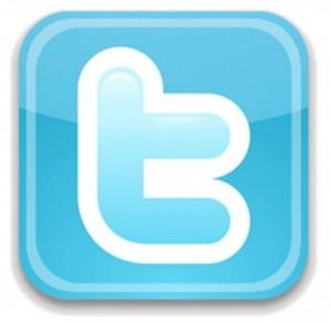Social Media Icon - 15 Tipps zu Twitter