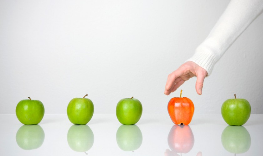 Berrypicking Werbeagentur